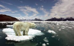 Climate Change Is Today's, Not Tomorrow's, Problem