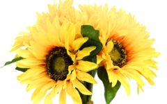 Synthetic sunflowers may hold key to improved solar energy collection