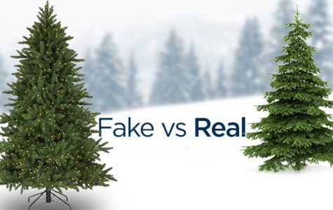 The Age-old Debate of Artificial vs. Natural Christmas Trees – Which is Better?
